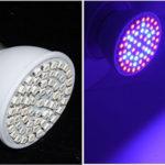 Мой выбор светодиодных ламп для растений, отзыв