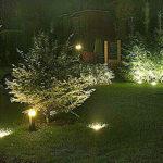 Светодиодное ландшафтное освещение