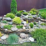 Как сделать каменистый сад